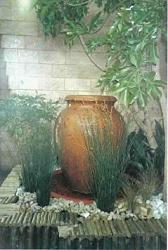 Container Gardening Picture