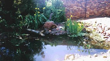 Design a garden for free