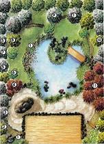 Free Japanese Garden Design