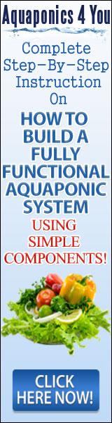 Aquaphonics for healthier herbs and veggies